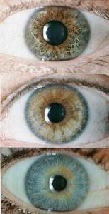 test_eyes2